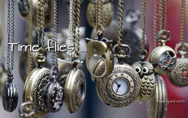Pixabay/info254